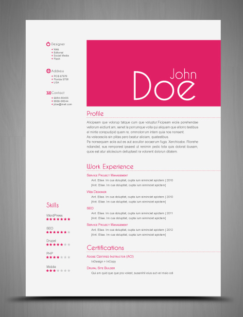 resume format template cv indesign. Black Bedroom Furniture Sets. Home Design Ideas
