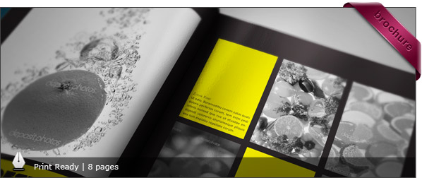 StockInDesign - InDesign Portfolio Book Presenter | FREE