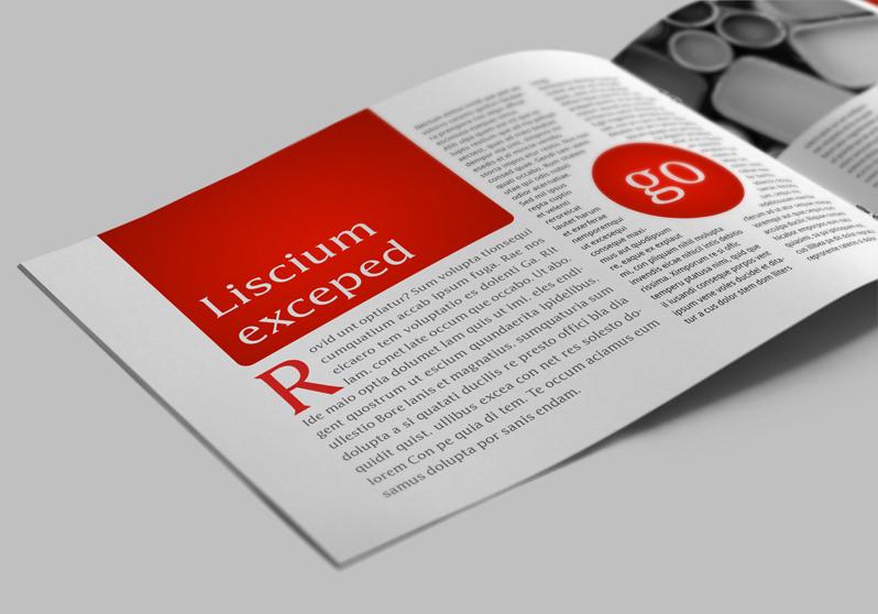 Case Study Template: Lander | StockInDesign