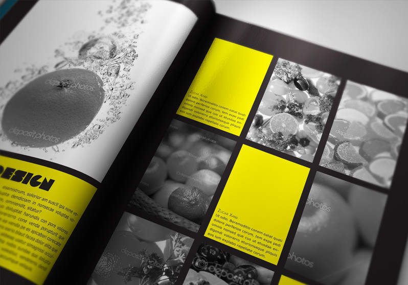 Portfolio book presenter stockindesign for Graphic designer portfolio template free download