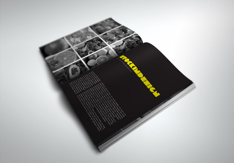 Portfolio book presenter stockindesign for Indesign templates for books