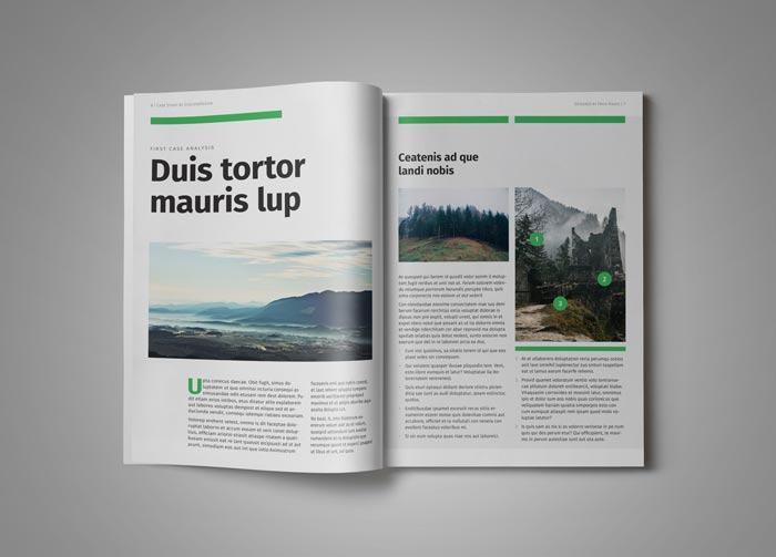 Case Study Template | Stockindesign