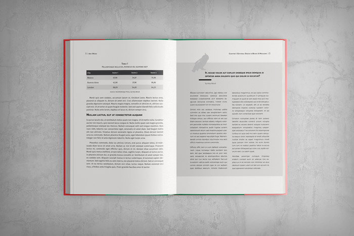 Indesign Book Template Stockindesign