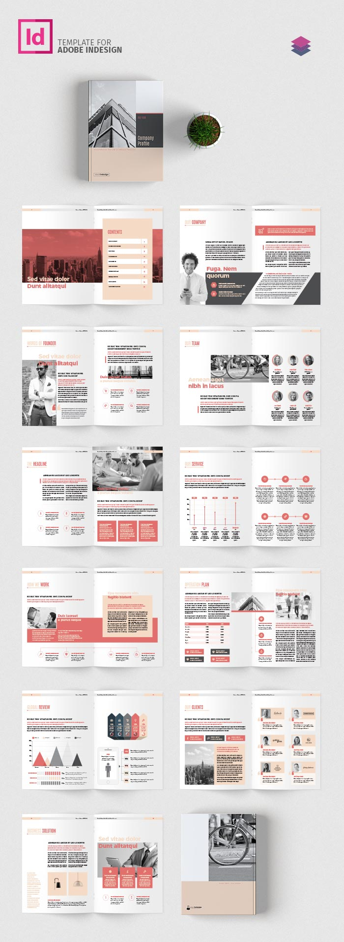 Company profile template adobe indesign templates for Adobe indesign brochure templates