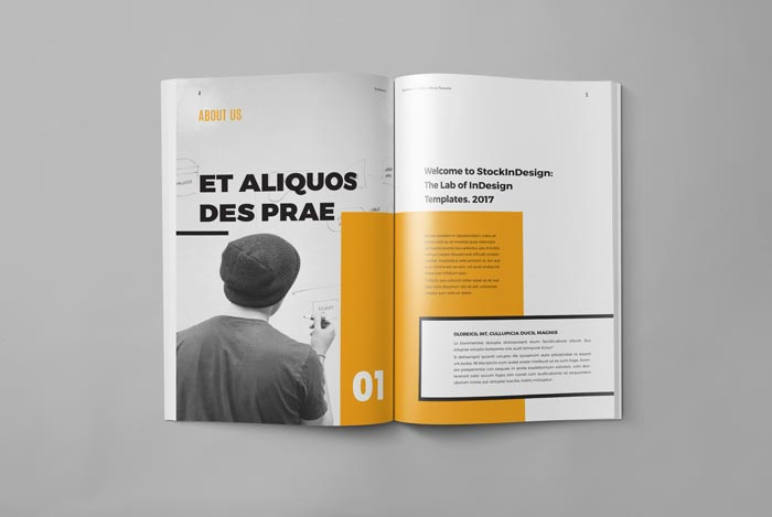 My Portfolio Template for Graphic Designer | Adobe InDesign Templates