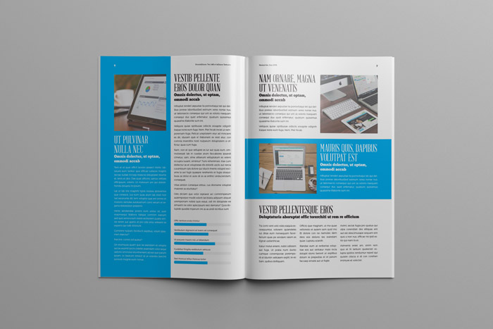 Business newsletter template adobe indesign templates for designers for Adobe newsletter templates
