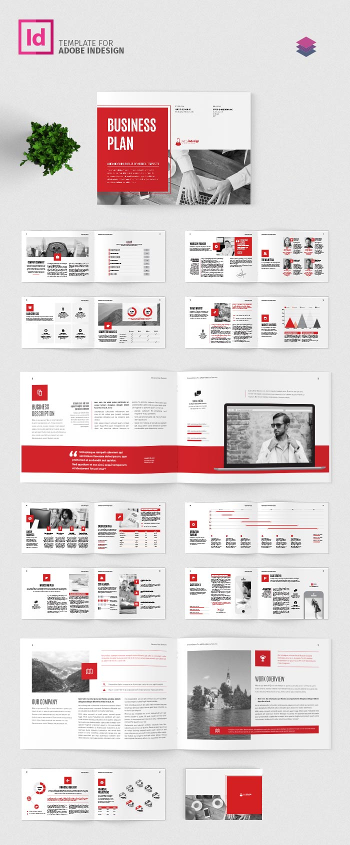 Business Plan Landscape Template | Adobe InDesign Template