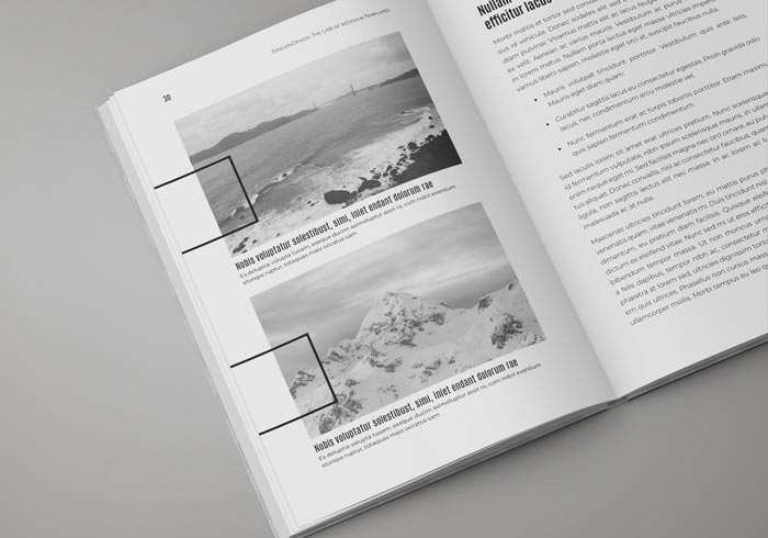 Book Template for Adobe InDesig