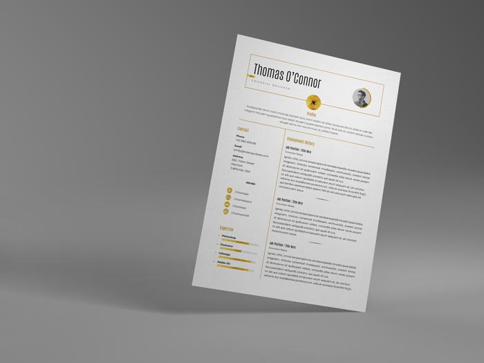 FREE Modern Resume Template
