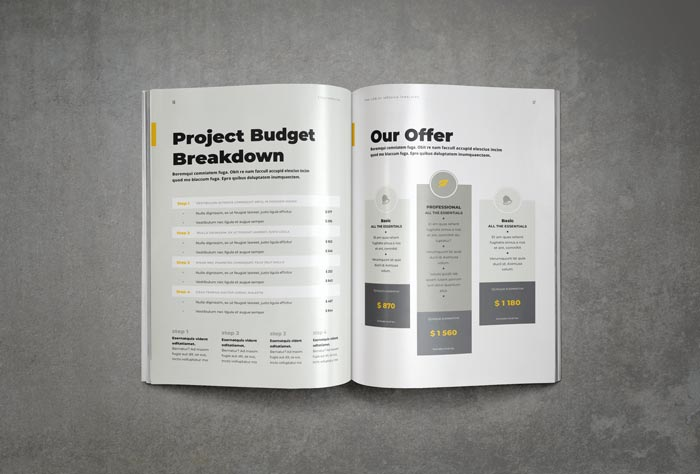 Book Design Proposal for InDesign