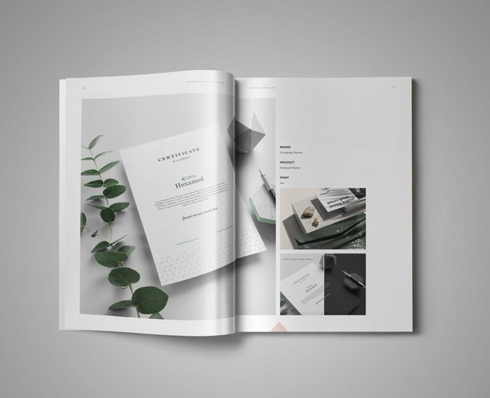 Graphic Design Portfolio Template in Adobe InDesign