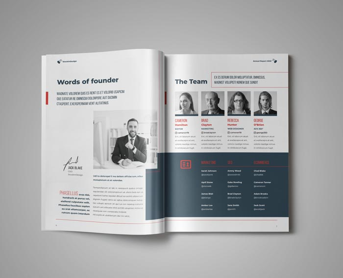 Annual Report Template for Adobe InDesign
