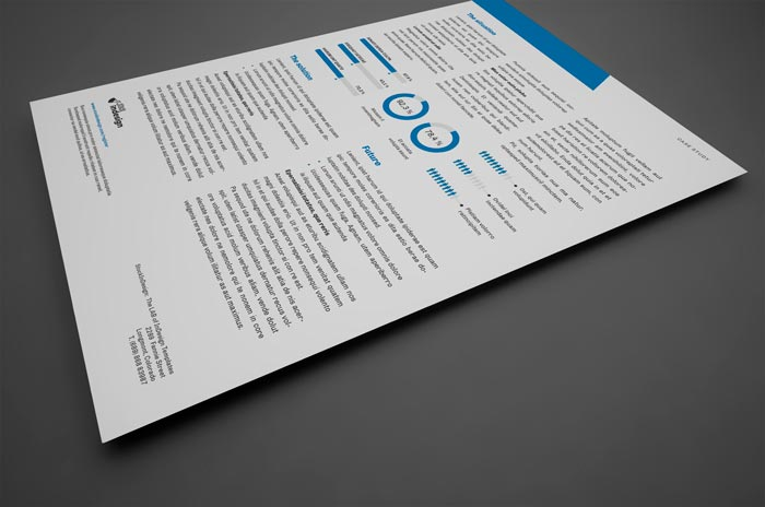 Case Study Template for Adobe InDesign