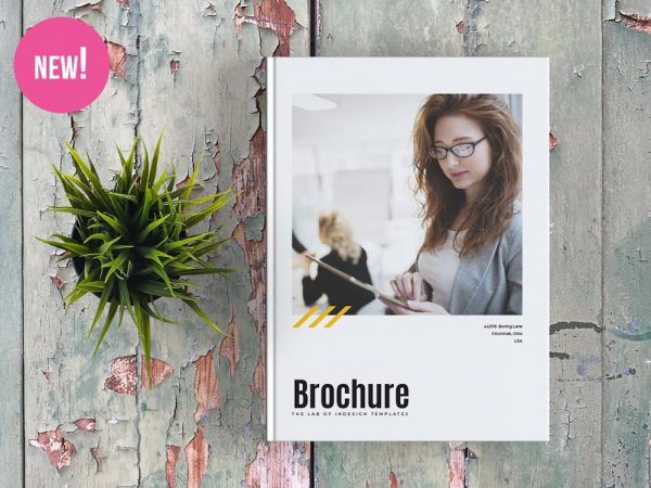 Free Corporate Brochure Template for InDesign
