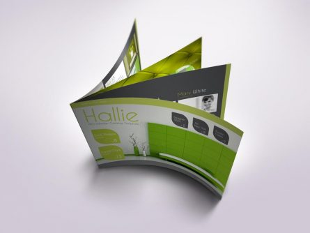Flexible product catalog: Hallie