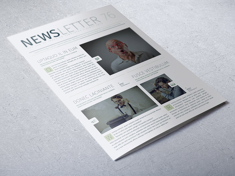 Modern Business Newsletter Template Adobe Indesign Template