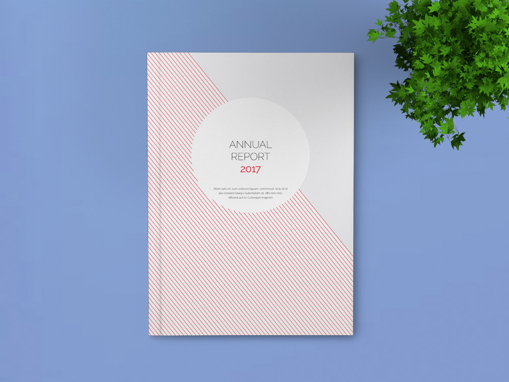 Annual Report Template  Indesign Template For Designers