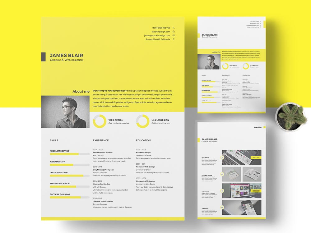 Free resume template free indesign templates for Free brochure templates for indesign