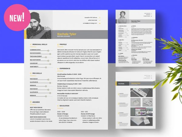 free indesign templates stockindesign
