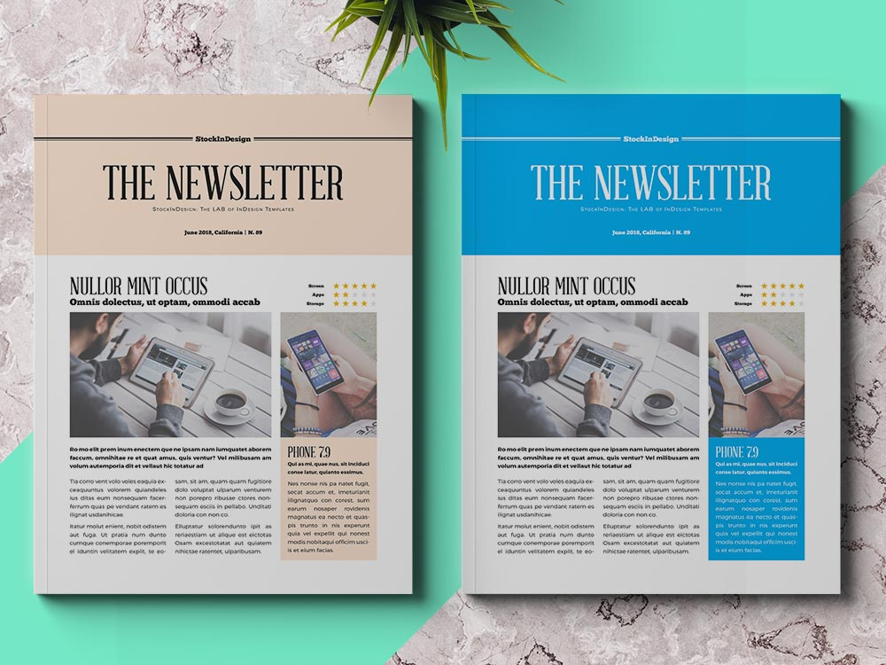 Business newsletter template adobe indesign templates for Adobe indesign magazine templates free download