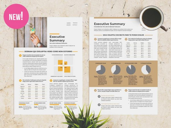 free executive summary template - Free Indesign Newsletter Templates