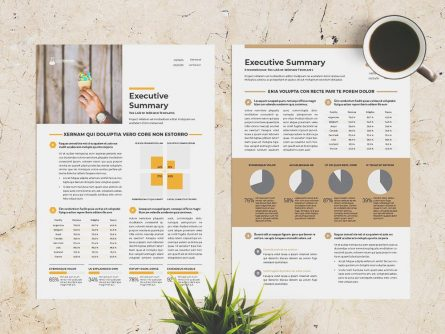 Free Executive Summary Template