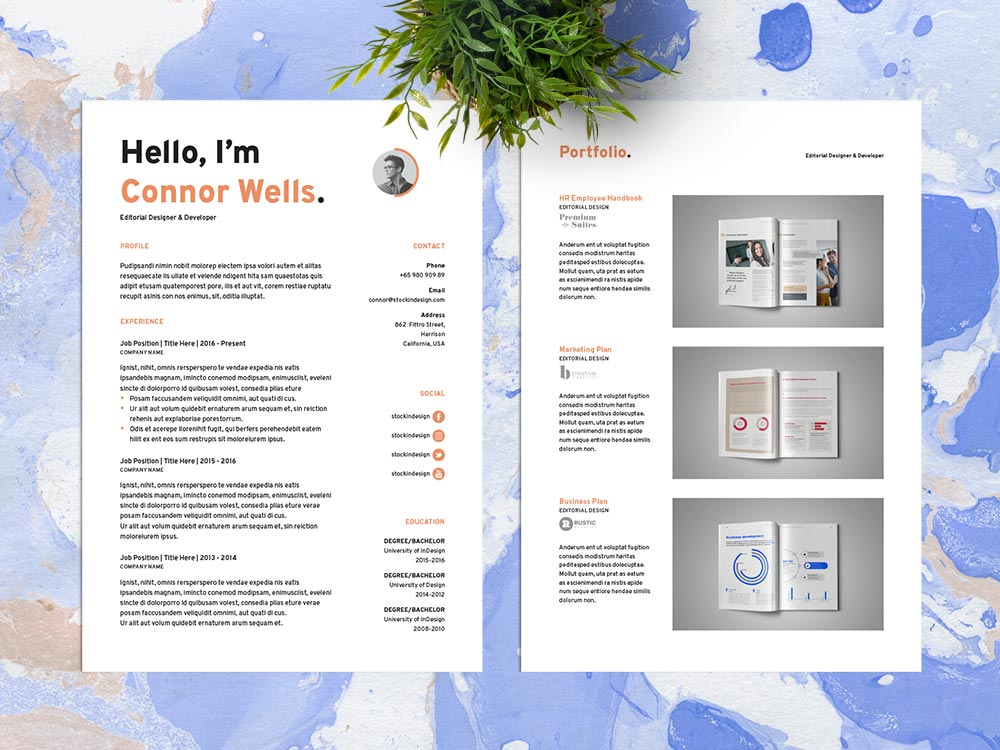 Free Resume Template for Designers in Adobe InDesign